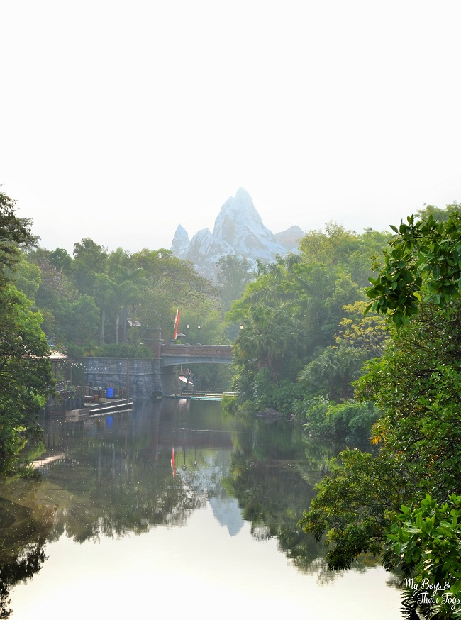 Animal Kingdom everest