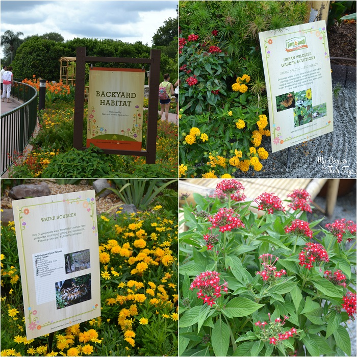 epcot international flower and garden