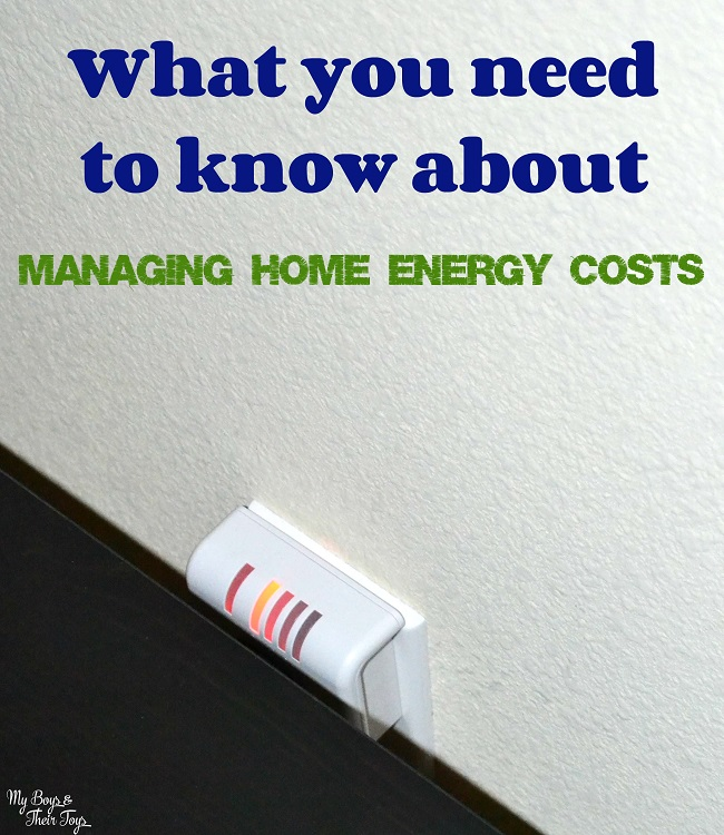 managing home energy costs