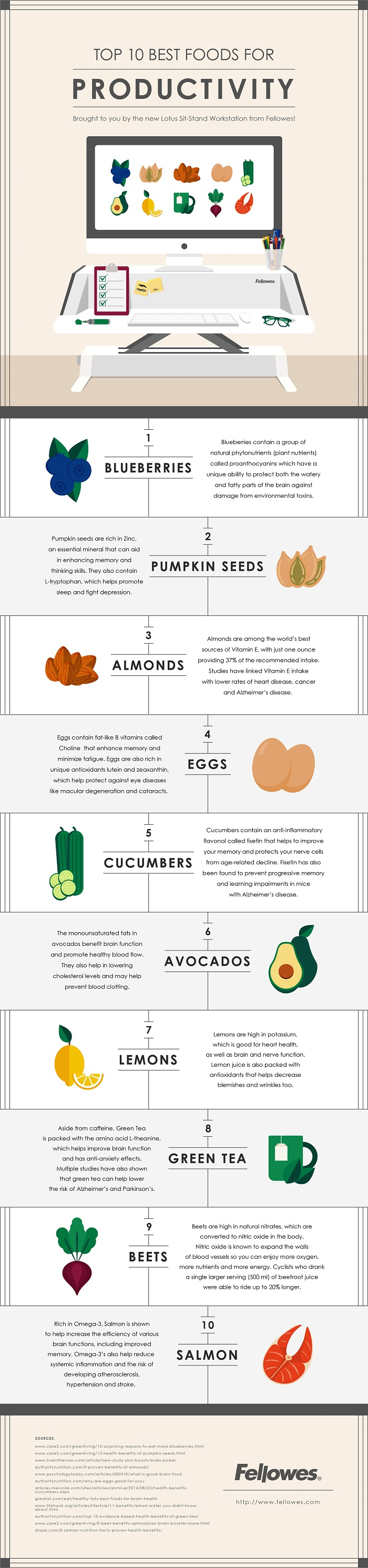 Top 10 Best Food for Productivity