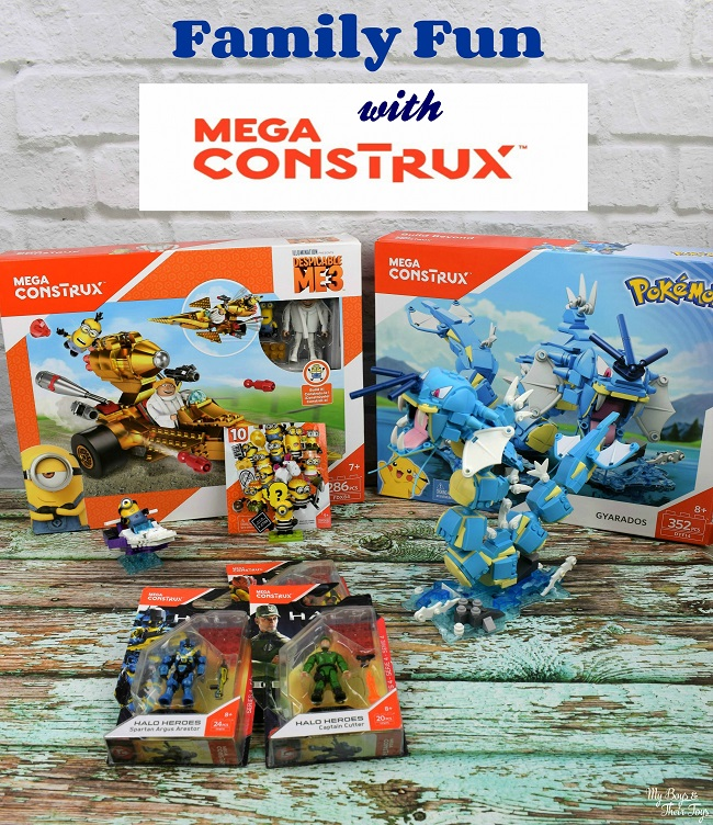 family fun with mega construx